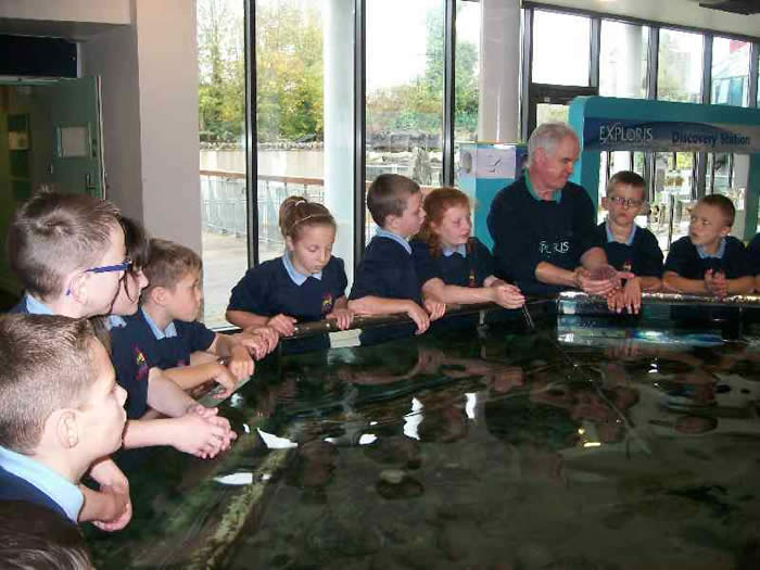 P6 at Exploris.